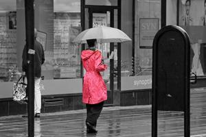 Regnet öste ner, allt var grått och trist... DÅ kom denna underbara färgklick gående förbi...