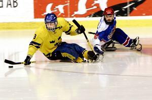 Östersund blir värd för B-VM i kälkhockey 15–21 mars med Sydkorea, Slovakien, Polen och Sverige som deltagande lag.