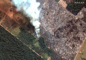 Bränderna i Brasilien är bara början. Foto: AP/TT