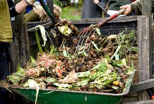 Kompost är mumma för jordens alla mikroorganismer som maskar och bakterier, och ger man jorden mat ger den tillbaka i form av större skörd av välmående växter.Arkivfoto: Paola N Andersson