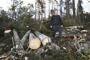 Skogsarbetare Jonas Wahlgren har fått fullt upp.
