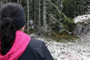 Sandra Grönlund in i den skog vid Hammardammen som vargen kom rusande från.