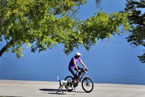 Vi ska ta krafttag för att göra vårt Gävle till en mycket bättre cykelkommun.