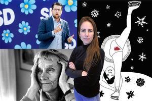 Sofia Gustafsson skriver om det orimliga i att fördöma Liv Strömquist men hylla Astrid Lindgren.