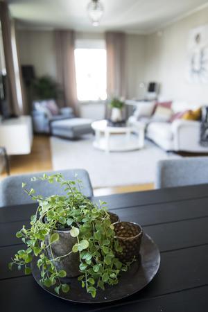 Köket och vardagsrummet hänger ihop i en öppen planlösning.