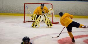 Alexander Sahlin tränade med laget på tisdagen, efter att ha klivit av måndagens ispass på grund av skada.