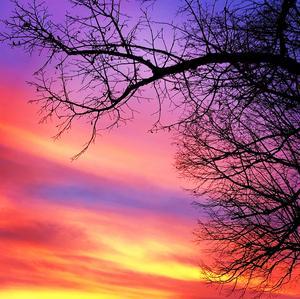 Solen har haft många fina färger den här månaden i Arboga. Sofia Annala har fotograferat.