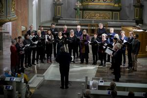 Domkyrkokören bjöd på fin sång på kulturnatten i Härnösands domkyrka.