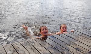 Undvik  att bada eller låta husdjur komma i kontakt med vatten där det pågår algblomning.