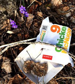 Våren är här. I´m lovin´ it. Foto: Göran Hedberg