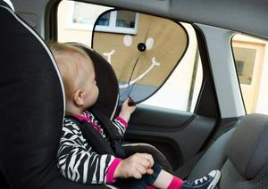 Ha som grundregel: inga ensamma barn i bilen.Foto: Claudio Bresciani / TT