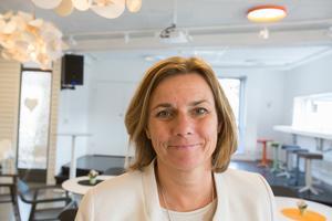 Klimatministern Isabella Lövin(MP) meddelade hösten 2018 att regeringen skulle satsa på nattågen igen.