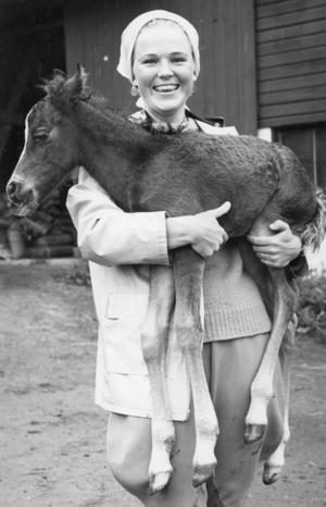 Djurvård stod på schemat. Här är Cathis med ett nyfött föl på Ungstjärnekursen vid Klosters herrgård sommaren 1965. Foto: Privat