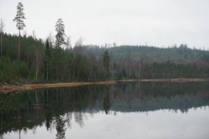 Lunån 113. Foto: Areal Hedemora