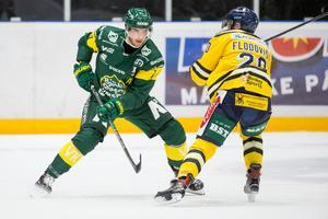 Alexander Hellström. Bild: Johan Löf/Bildbyrån