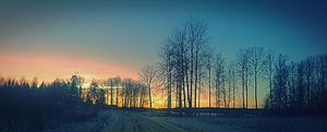När vintern är som bäst bjuder den på guld. Foto: Johan Pettersson