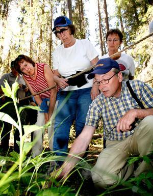 På jakt efter att skåda orkidéer. Foto: Mårten Englin