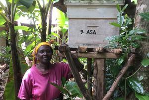 Rosemary med bikupa skänkt av Åsa. Bild: Privat