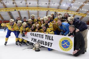 Landslaget firar efter VM-guldet 2017 efter att ha besegrat Ryssland i finalen. Bild: Janerik Henriksson/ TT