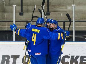 Evenemang är viktigt och ett stort sådant var U 18 VM i Örnsköldsvik i april. Foto: Arkiv
