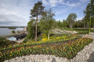 Utsikten från det stora picknickbordet är vid över både blomsterhavet och Hudiksvallsfjärden.