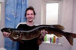 Thomas Elving fick en riktig krokodil på kroken vid sitt besök i Härnösand i maj.