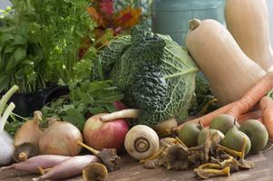 Dags att plocka in hösten i köket. Passa på att frossa i säsongens godsaker.