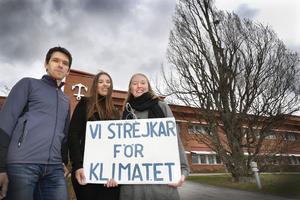 De belyser klimathotet genom att strejka utanför kommunhuset varje fredag och med jämna mellanrum arrangera