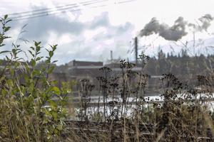Sågverket i Östavall har funnits i 70 år.