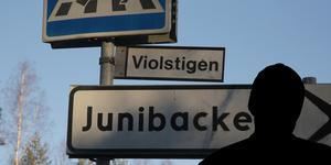 Vid två tillfällen ska en okänd man ha försökt locka med sig två elever från Junibackens skola i Ludvika. Bilden är ett montage
