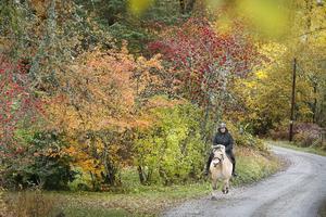 De slingriga vägarna i Smara är perfekta för ridning. Kanske är det därför många i byn har hästar. Den lilla byn kallas för