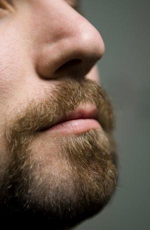 Ett skägg innehåller många bakterier, har Hosjöemma läst. Foto: Claudio Bresciani/TT