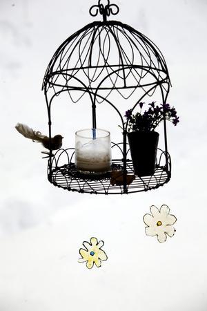 I fågelburen i köksfönstret gör Lena olika arrangemang efter årstid. Här brinner ofta ett ljus på kvällarna. Buren är inköpt på en av hennes favoritaffärer, Smultrongården i Dylta.