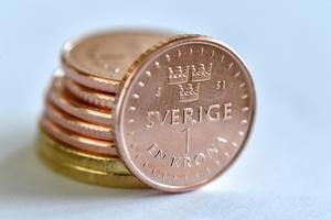 Hur sköter sig den offentliga sektorn? Foto: Anders Wiklund / TT