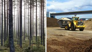 Gustav Melin, vd på Svebio, tillbakavisar resonemanget om att bioenergi från svenska skogar till och med kan vara sämre än fossila bränslen. Bilder: Berit Roald/TT / Rune Jensen