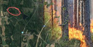 Skogsbrandsområdet ligger strax väster om sjön Tärnan, norr om Segersäng.