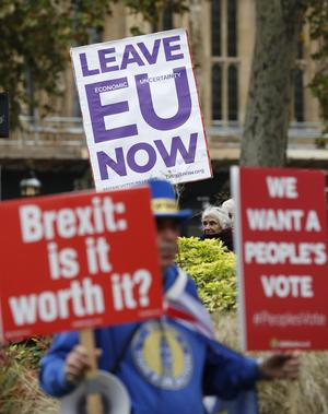 Brexit-anhängare och Brexit-motståndare demonstrerar utanför parlamentet i London 16:e november.  AP Photo/Alastair Grant
