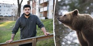 Bashir Al-Hasan mötte björnar under fisketuren. Björnen på bilden hör dock hemma på Skansen.