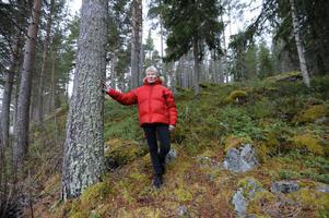 Gunnel Carlsson i Perhansbodarna är ledsen och besviken över att hon inte får behålla skogsskiftet som tillhört hennes gård i generationer.