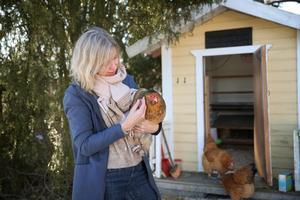 """Anette Sievers förklarar att höns är sociala djur och att de kan bli väldigt tama. """"Barn tycker ofta att det är roligt med höns och vill gärna vara med och kan hjälpa till att ta hand om dem"""", säger hon."""