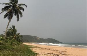 Halva Busua Beach består av hotell och enklare boenden. Andra halvan är en öde enorm strand. Men marken är uppköpt och troligtvis kommer det inom tio år att trängas turister även där. Foto: Anders Nilsson