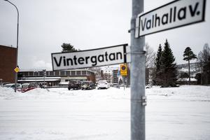 Roger Franzén Nilsson tror att ett extra övergångsställe i närhet att korsningen vid Vintergatan och Valhallavägen skulle kunna vara en lösning. På Trafik- och parkavdelningen håller man inte med.