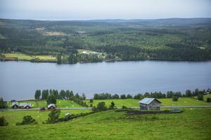 Sveriges självförsörjning av livsmedel är bland de lägsta inom hela Europa och fortsätter att sjunka på grund av dålig lönsamhet för svenska lantbrukare, skriver Moderaterna.
