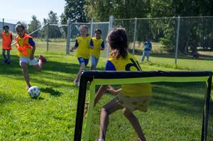Även i år kommer det att hållas fotbollsskola i Borlänge. (Arkivbild)