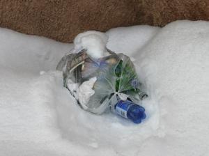 En kastad soppåse på Tallvägen. Men vem har renhållningsansvaret när hyresgästen inte bryr sig?