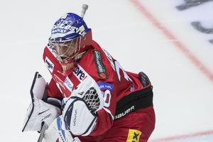 Oliver Dackell gjorde sin andra match i Modo och höll laget kvar i matchen i andra perioden mot Almtuna.                              Bild: Erik Mårtensson/TT