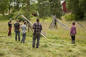 Kursdeltagarna på hållbar kunskap vid Bäckedals Folkhögskola har en tvådagars kurs i att slå med lie för att förbereda sig för vistelsen på fjälljordbruket Lillhärjåbygget.