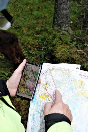 Nästa år hoppas Lars-Erik Gahlin, från Östersunds orienteringsklubb, att de kan locka dubbelt så många deltagare till Hittaut och att klubben kan utöka antalet områden och kartor där man letar kontroller.