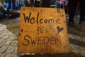 Sverige kan inte ensam rädda världen, skriver signaturen.