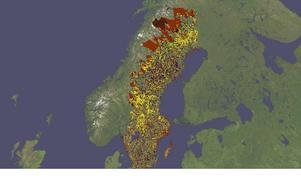 I vissa landskap är det svårt att se vilken mark som inte är skyddad: Markerat är alla nationalparker, naturreservat, biotopskydd, naturvårdsavtal, ekoparker, nyckelbiotoper samt frivilliga avsättningar. Ungefär 25 procent av Sveriges 28 miljoner hektar skogsmark är i dag undantagen från skogsbruk . Utöver det lämnas 8 procent av skogen kvar vid avverkning, av hänsyn.